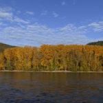 Indian Summer im Mittelrheintal
